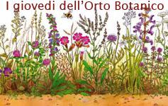 Coltivare la biodiversità - i giovedì dell'ortobotanico