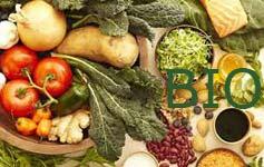 Strategie di aggregazione dell'offerta dei prodotti agricoli biologici
