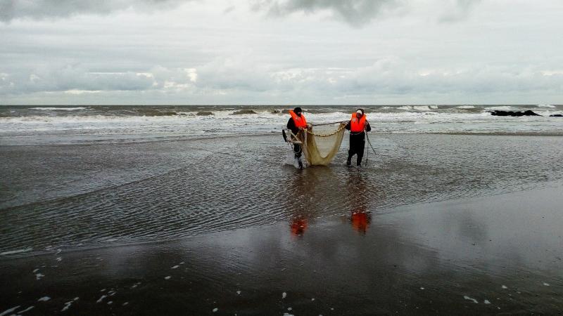 Sfide globali, delegato in Europa per la salvaguardia del mare il Direttore di Scienze Francesco Regoli