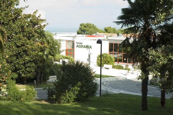 Panoramica con giardino