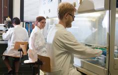 Scuole di specializzazione in Medicina 2014-2015