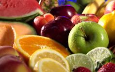 """Corso di Perfezionamento in """"Nutrizione in Condizioni di Fragilità"""""""