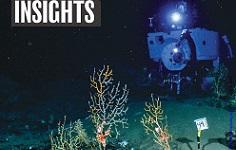 Science pubblica la proposta di tutela degli abissi marini